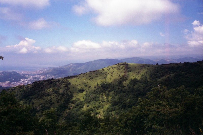 The Hills, Genova