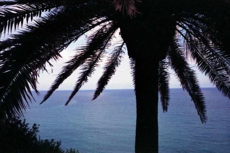 The Sea, Genova