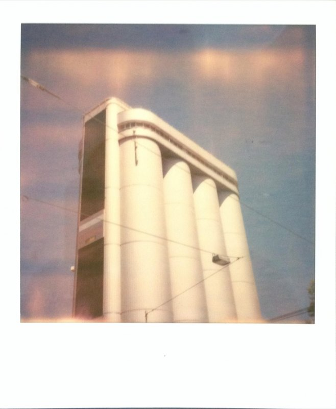 PolaroidWeek Day 2