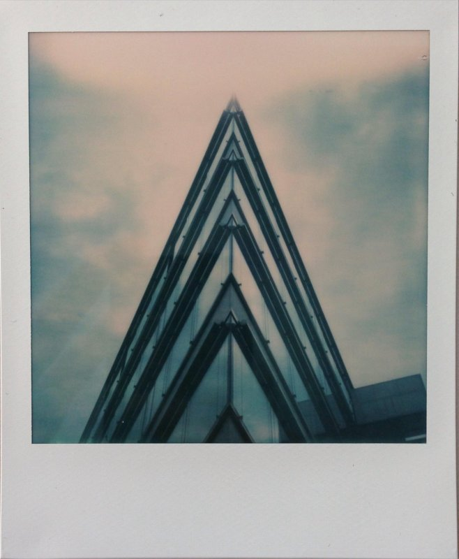 PolaroidWeek Day 1